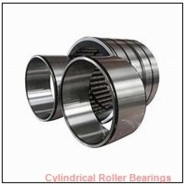 0.625 Inch | 15.875 Millimeter x 1.125 Inch | 28.575 Millimeter x 0.75 Inch | 19.05 Millimeter  CONSOLIDATED BEARING 94212  Cylindrical Roller Bearings #1 image